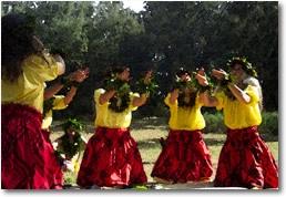 hula_dancers