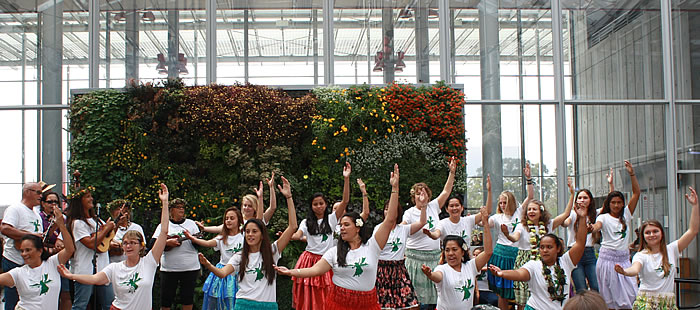 Our group enjoys sharing Hula at the Academy of Science in Golden Gate Park